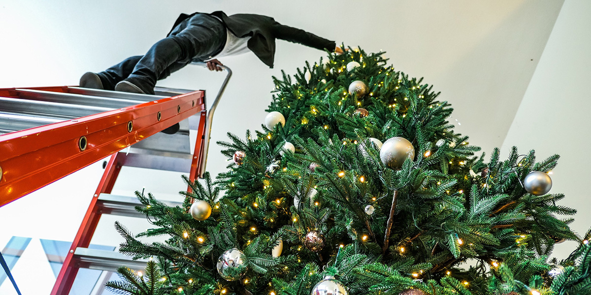 A man climbs a high ladder to decorate a Christmas tree